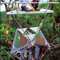 10/00/2001. EXCLUSIVE: The Malagasy Canopy Uncovers its Secrets to the Treetop Raft