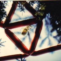 1985 Pilat   vue du dessous