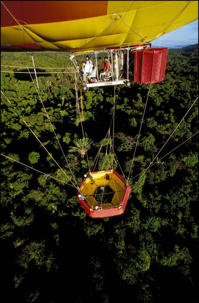 Harvesting on the canopy of the rainforest from the sled, which is held by the dirigible.