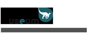 logo_Museum_RBINS